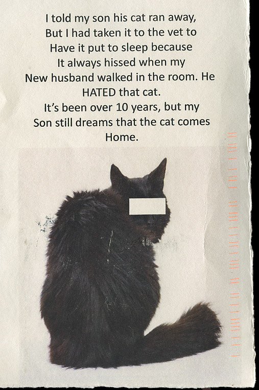 6.blackcat