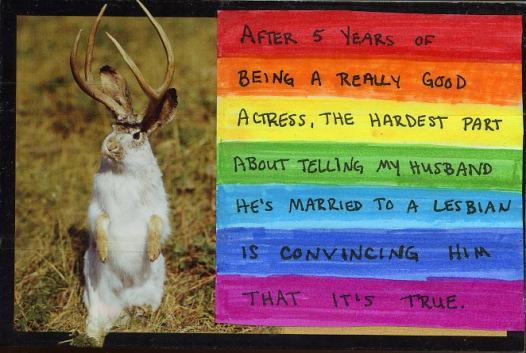 4.rabbit